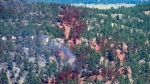 Smoke and fire retardant are seen along a neighbourhood in Lake Country, B.C., Sunday, July 16, 2017.  THE CANADIAN PRESS/Jonathan Hayward