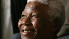In this Jan. 31, 2006 file photo former South African President Nelson Mandela smiles during his meeting in Johannesburg, South Africa. (AP / Themba Hadebe)