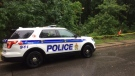 Ottawa Police investigating shooting on Alpine Ave. on Monday, Jul. 24, 2017. (Jim O'Grady/CTV Ottawa)