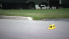 Evidence markers sit on Ascot Place in Waterloo after a woman fell from a moving pickup truck.