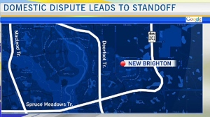 Domestic incident turns into standoff