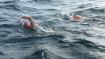 Emily Epp, left, is seen in an undated handout photo swimming the English Channel alongside her coach, Brent Hobbs. (THE CANADIAN PRESS/HO-Epp Family)
