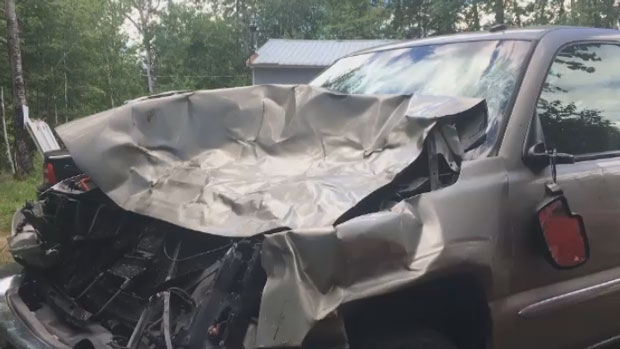 The latest moose collision on Route 8 occurred Monday. No one was seriously injured.
