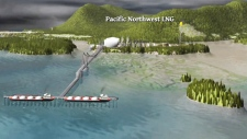 Natural gas company pulls plug on B.C. LNG project