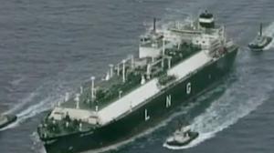 Petronas scraps LNG project
