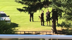 Authorities were forced to shoot and kill a cougar at Willow Park Golf Course on Wednesday morning.
