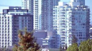 CTV Calgary: Province holds public meeting