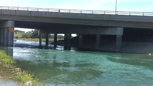 Police are investigating after a body was found in the water near the Bow Waters Canoe Club in the southeast on Wednesday.