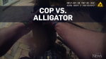 Police officer wrestles alligator
