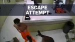 Security footage shows vicious escape attempt