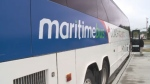 The Maritime bus service that travels from Saint John to the international border and back hasn't been on the road for five years but will be returning to the Maritimes.