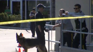 shooting in south surrey