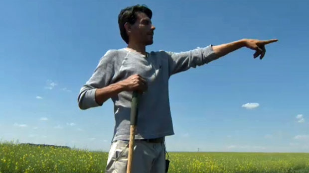Muhammed El-Dehar looks over his crops on a property east of Calgary city limits