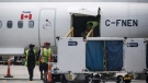 Baggage handlers are seen removing baggage from a WestJet aircraft on Friday, July, 28, 2017. THE CANADIAN PRESS/Christopher Katsarov