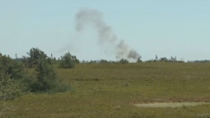 A forest fire, which started Saturday afternoon, has consumed about 50 hectares of land on New Brunswick's Miscou Island.