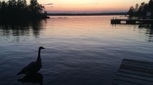 A weekend getaway at Brereton Lake. Photo by Gage Wilkinson