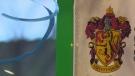 Harry Potter house symbol