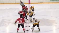 Winter Hawks vs. Siskins