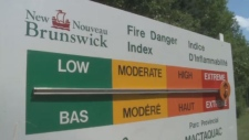 Earlier this month, the New Brunswick government said the forest fire hazard in the province was the highest in 20 years.