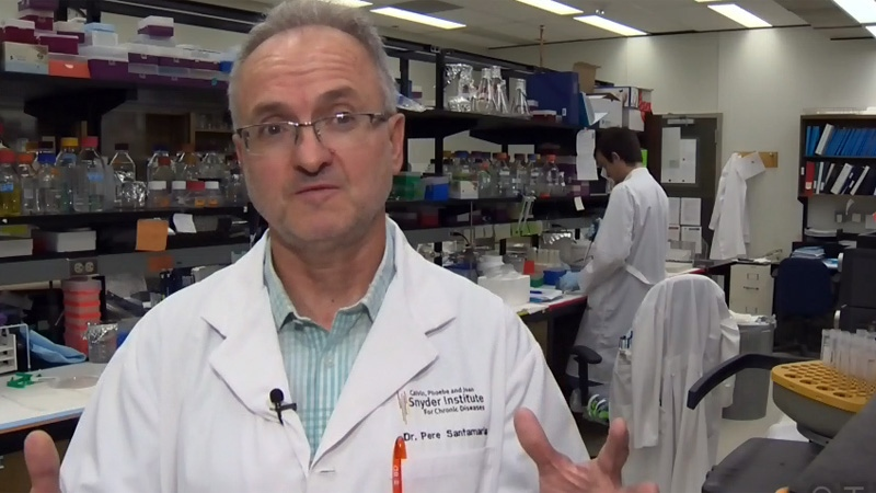 University of Calgary immunology and infectious diseases specialist Dr. Pere Santamaria