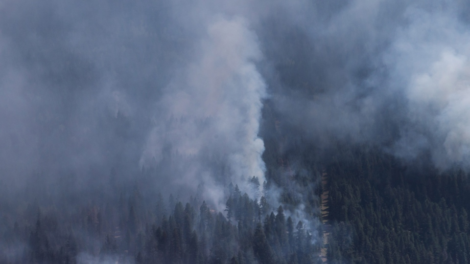 A wildfire is seen from a Canadian Forces Chinook helicopter as Prime Minister Justin Trudeau views areas affected by wildfire near Williams Lake, B.C., on Monday July 31, 2017. THE CANADIAN PRESS/Darryl Dyck
