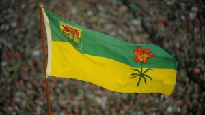 The Saskatchewan flag blows in the wind before the final Saskatchewan Roughriders game at Mosaic Stadium in Regina on Saturday, Oct. 29, 2016. THE CANADIAN PRESS/Mark Taylor