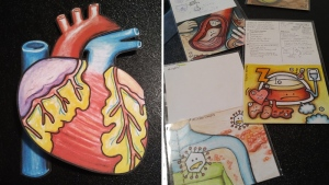Heart drawing and doodles