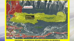 A woman was attacked by a bear in a closed area near Canmore over the weekend.