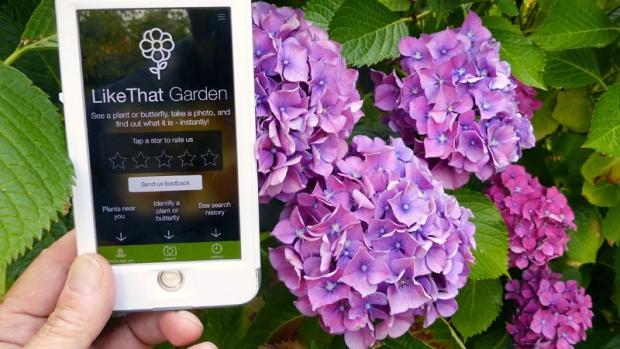 Gardening app 'Like That Garden'