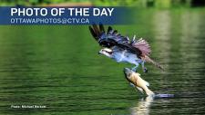 (Michael Norkum/CTV Viewer)