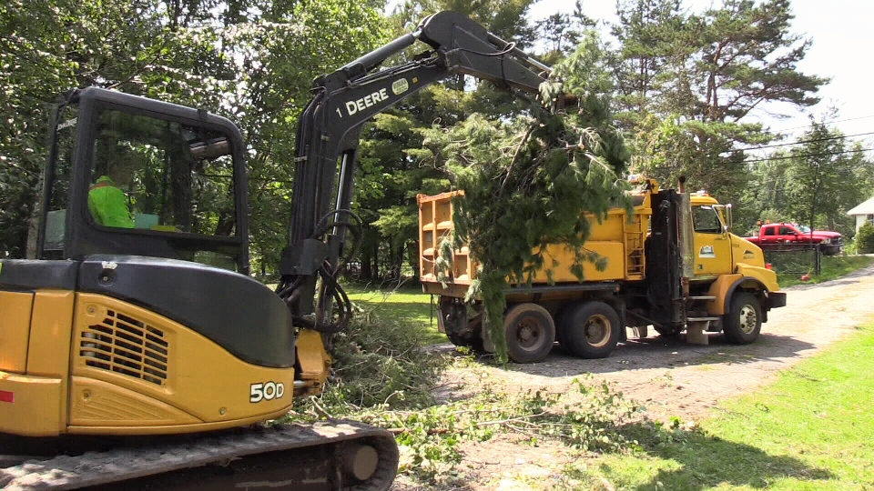 Crews cleanup broken tree branches after a tornado touched down in Huntsville, Ont. (CTV Barrie)