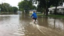 Cyclist - flash flood Louise Street