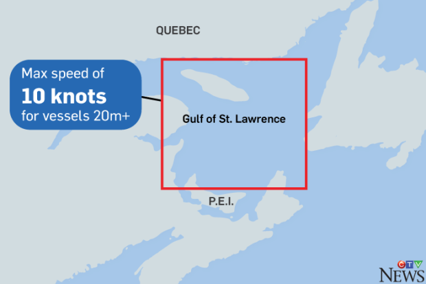 St. Lawrence Whale Zone