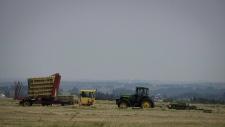 Farmer Grant Bird, left, and farm hand Connor Hunt bale a hay crop near Cremona, Alta., Monday, July 17, 2017. (Jeff McIntosh/THE CANADIAN PRESS)