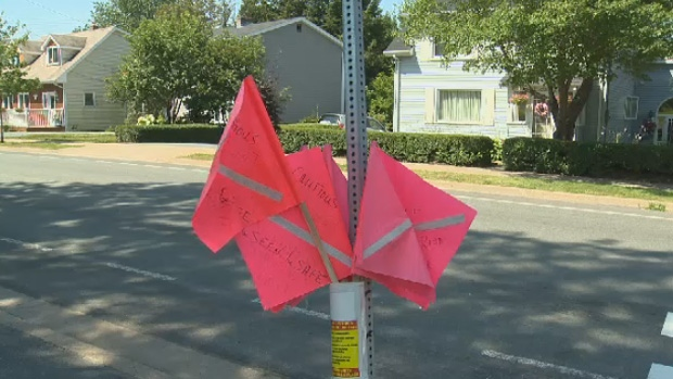 A number of safety campaigns have been initiated to try and minimize the amount of pedestrian crashes, including these crosswalk flags.