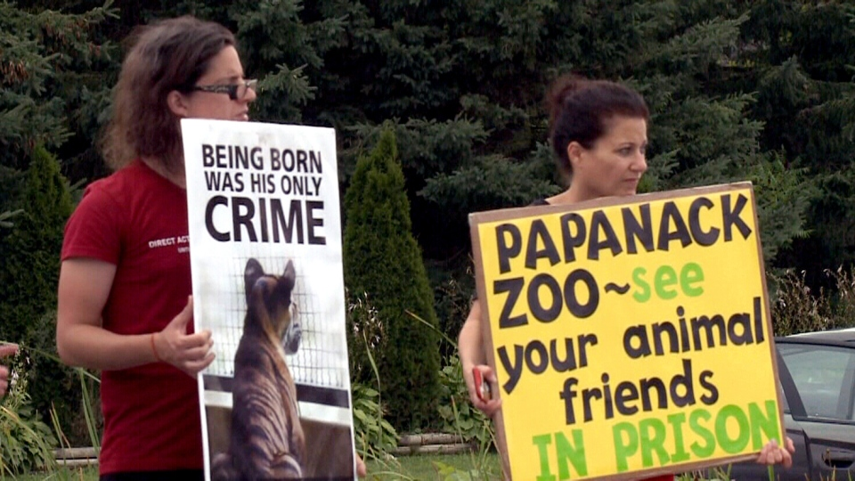 The video sparked a protest outside the zoo.