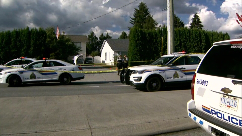 There was a heavy police presence at Dewdney Trunk and 203rd Street after witnesses reported hearing gunshots on Aug. 13, 2017. (CTV)