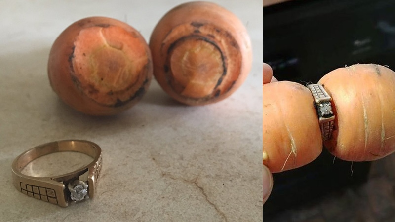 On Monday, August 14, 2017 Mary Grams' engagement ring that she lost in the garden in 2004 was found, after a carrot grew into it. Supplied.