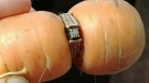 Missing diamond ring found wrapped around carrot
