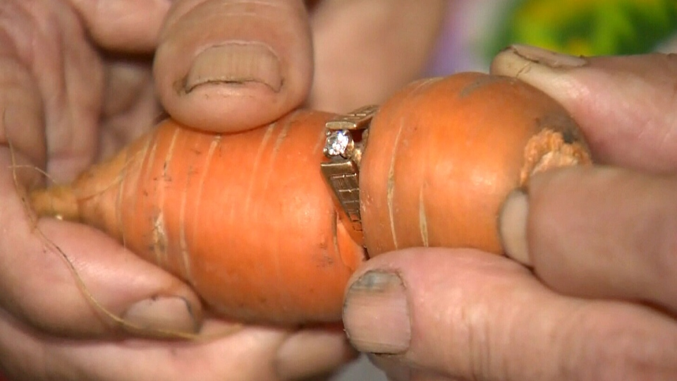 Mary Grams' diamond engagement ring, pictured above, was found wrapped around a carrot on her family's farm. It had been missing for more than a decade.