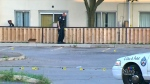 Police are investigating after three people were injured in a shooting in the city's Jane and Finch neighbourhood.