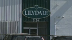 Lilydale plant in Calgary to move