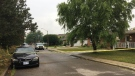 Windsor police are investigating a double stabbing on Jefferson Boulevard in Windsor, Ont., on Thursday, Aug. 17, 2017. (Christie Bezaire / CTV Windsor)