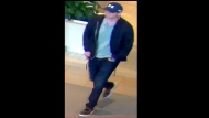 Police released this security image of a suspect accused of stealing from a jewelry store at Fairview Mall. (Police handout)