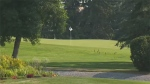 Players were asked to leave the course as a precaution after a big cat was spotted behind the pro shop by a member.