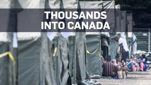 Thousands of asylum seekers pouring into Canada