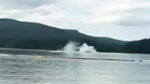 Pilot 'lucky to be alive' after float plane crash