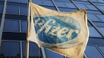 A Pfizer flag is displayed in front of the company's world headquarters in New York on Monday, Nov. 23, 2015. (AP / Mark Lennihan)