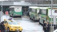 A number of GO buses are shown in this file photo. (Chris Fox/CP24.com)