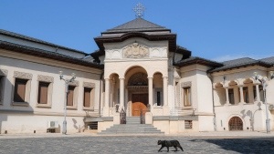 A cat walks outside a building in the Romanian Patriarchal Cathedral compound, where a meeting the Holy Synod takes place, in Bucharest, Romania, Thursday, Aug. 17, 2017. (AP Photo/Vadim Ghirda)